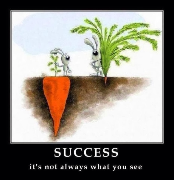 success_not-what-you-see1